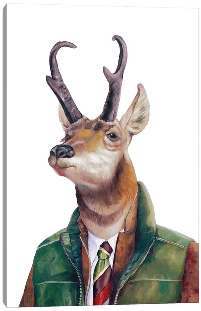 Pronghorn Canvas Art Print