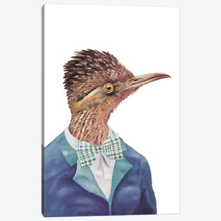 Roadrunner Canvas Print #ACR46} by Animal Crew Canvas Art