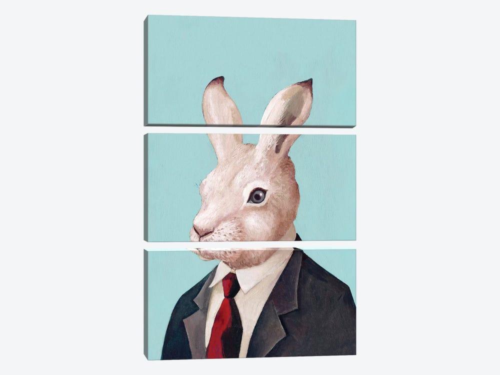 White Rabbit by Animal Crew 3-piece Canvas Print