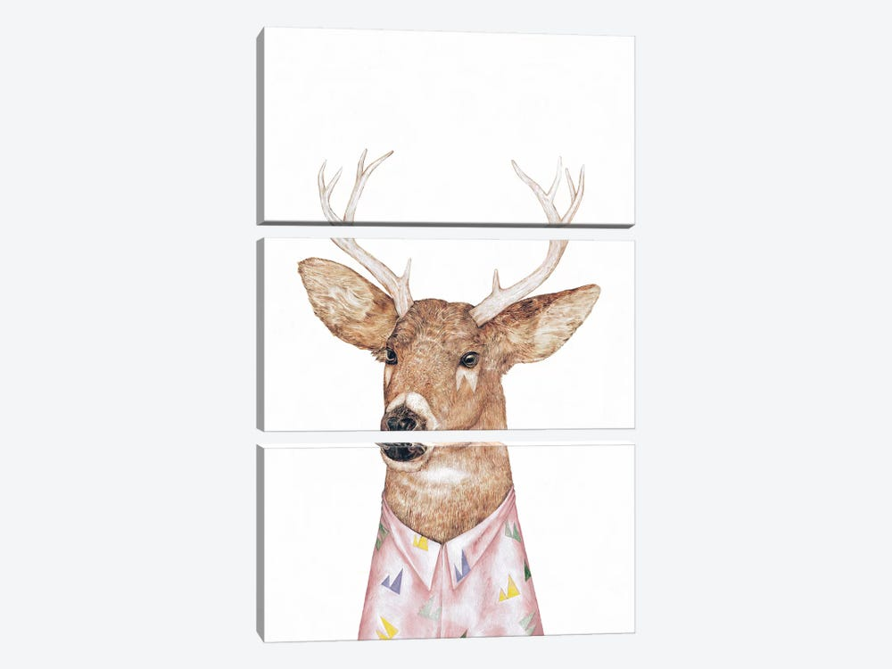 White-Tailed Deer by Animal Crew 3-piece Canvas Artwork