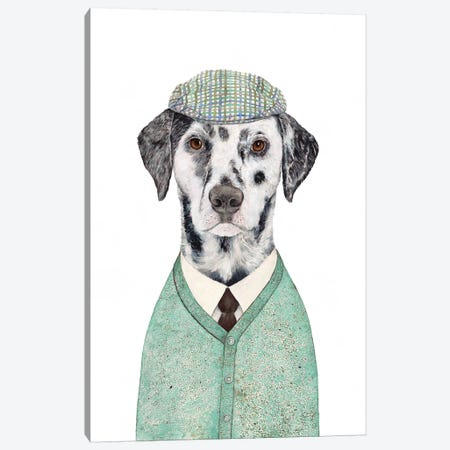 Dalmatian Canvas Print #ACR8} by Animal Crew Canvas Art