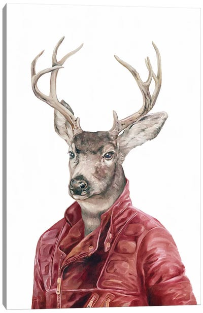 Deer In Leather Canvas Art Print