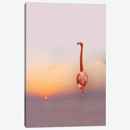 Sunset ... Canvas Print #ACS5} by Anna Cseresnjes Canvas Artwork