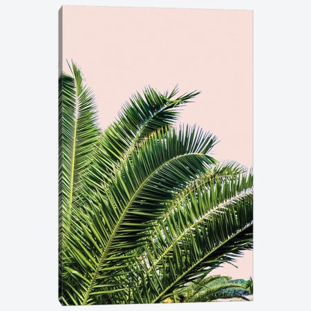 Tropical Leaves on Blush I Canvas Print #ACT10} by Acosta Canvas Art