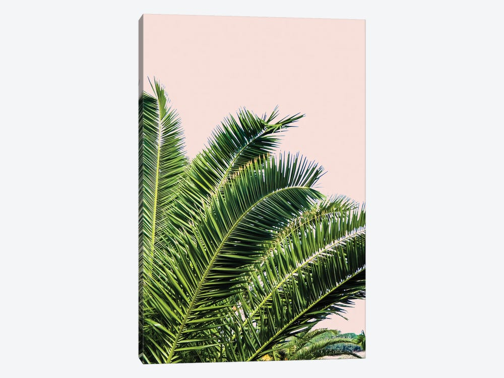 Tropical Leaves on Blush I by Acosta 1-piece Canvas Art Print