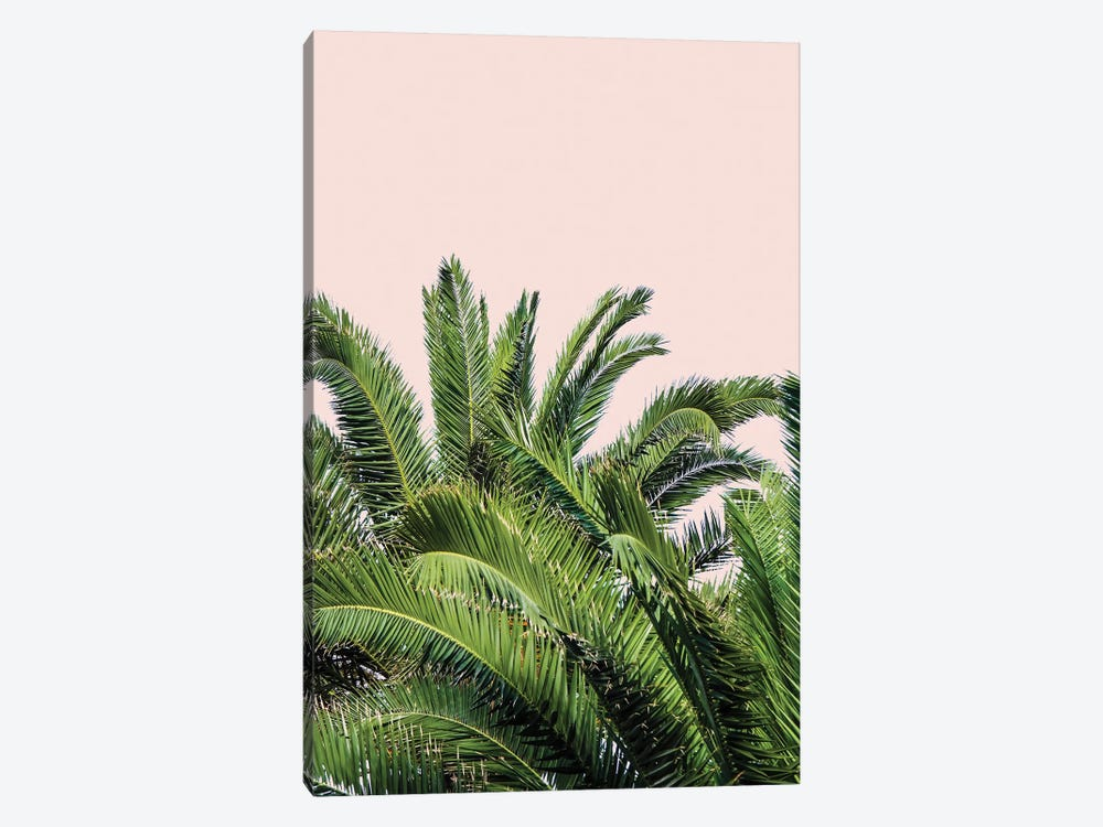 Tropical Leaves on Blush II by Acosta 1-piece Canvas Art