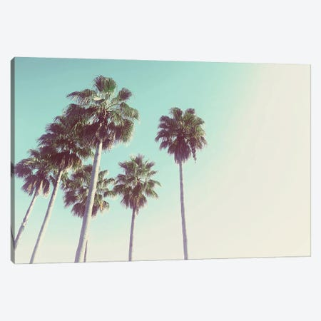 Palms Against The Evening Sky Canvas Print #ACT17} by Acosta Canvas Print