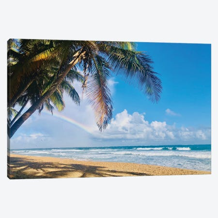 Under the Palms Canvas Print #ACT44} by Acosta Canvas Wall Art