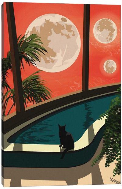 An Unusual Evening Canvas Art Print