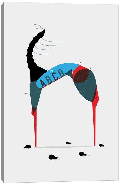 Idra n°2 Canvas Art Print