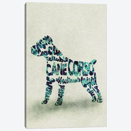 Cane Corso Canvas Print #ADA19} by Ayse Deniz Akerman Canvas Wall Art