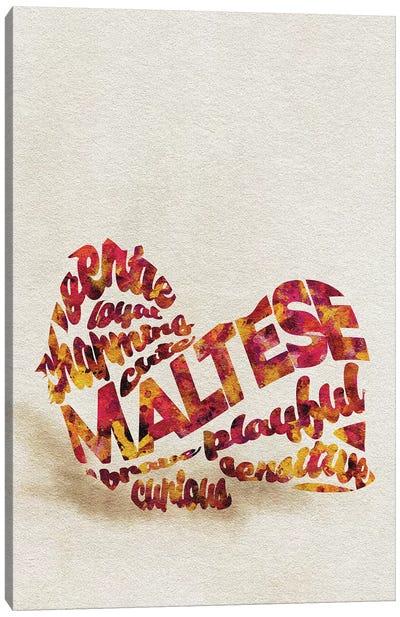 Maltese Canvas Art Print