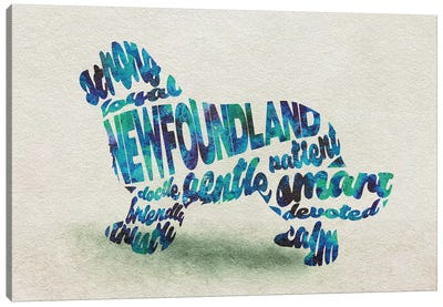 Newfoundland Canvas Art Print