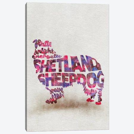 Shetland Sheepdog Canvas Print #ADA51} by Ayse Deniz Akerman Canvas Art
