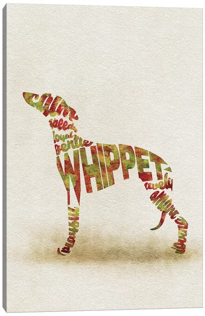 Whippet Canvas Art Print