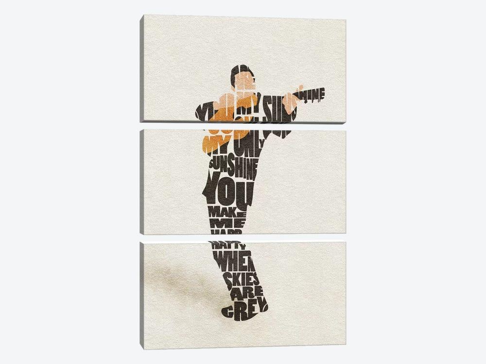 Johnny Cash by Ayse Deniz Akerman 3-piece Canvas Wall Art