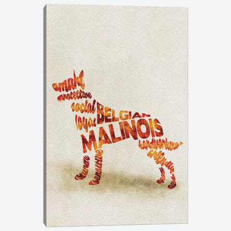 Belgian Malinois Canvas Print #ADA8} by Ayse Deniz Akerman Canvas Art Print