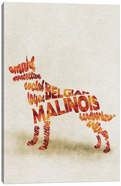 Belgian Malinois Canvas Art Print