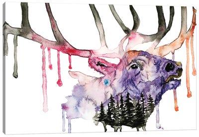 Hirsch Canvas Art Print