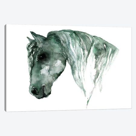 Horse Canvas Print #ADE26} by ANDA Design Canvas Artwork
