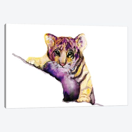 Little Tiger Canvas Print #ADE31} by ANDA Design Canvas Artwork