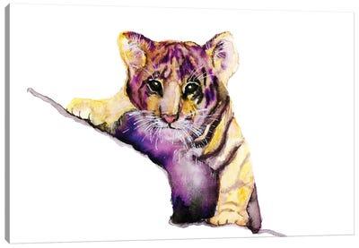 Little Tiger Canvas Art Print