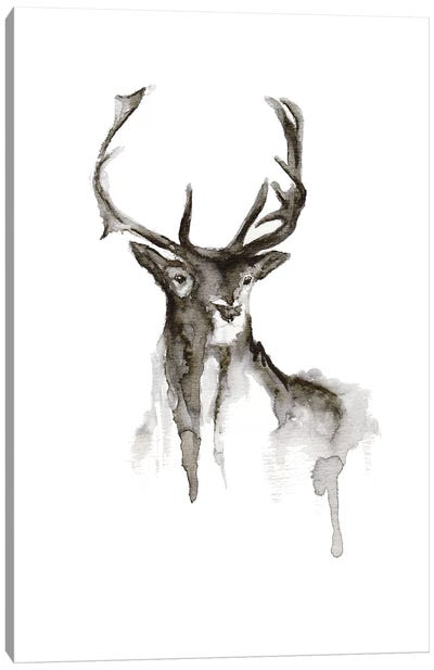 Patronus Canvas Art Print