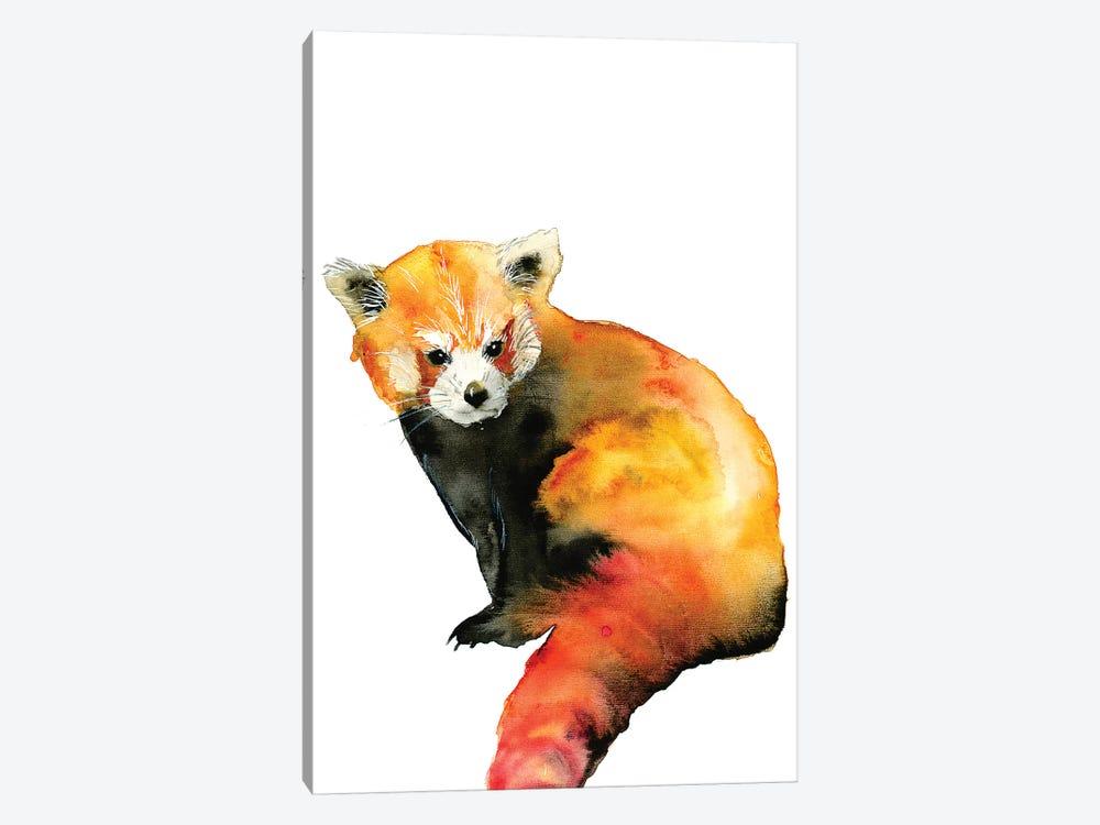 Red Panda by ANDA Design 1-piece Art Print