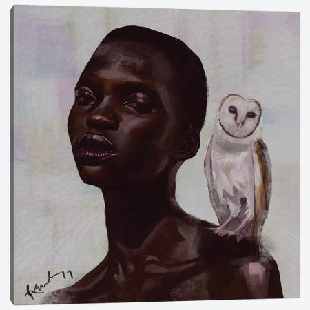 Barn Owl Canvas Print #ADK2} by Adekunle Adeleke Art Print