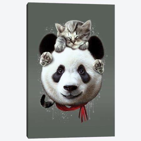 Cat On Panda Canvas Print #ADL128} by Adam Lawless Canvas Print
