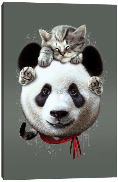 Cat On Panda Canvas Art Print