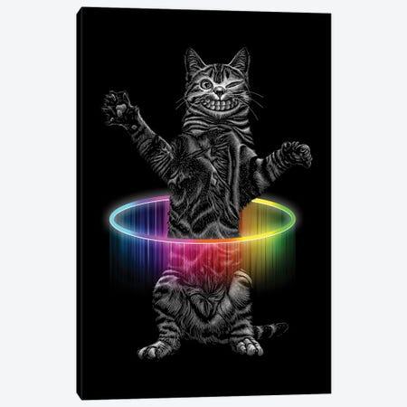 Hullahoop Cat Canvas Print #ADL135} by Adam Lawless Canvas Art Print