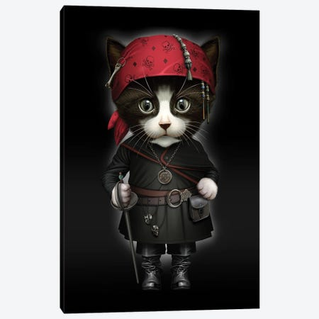 Pirate Cat Canvas Print #ADL154} by Adam Lawless Art Print