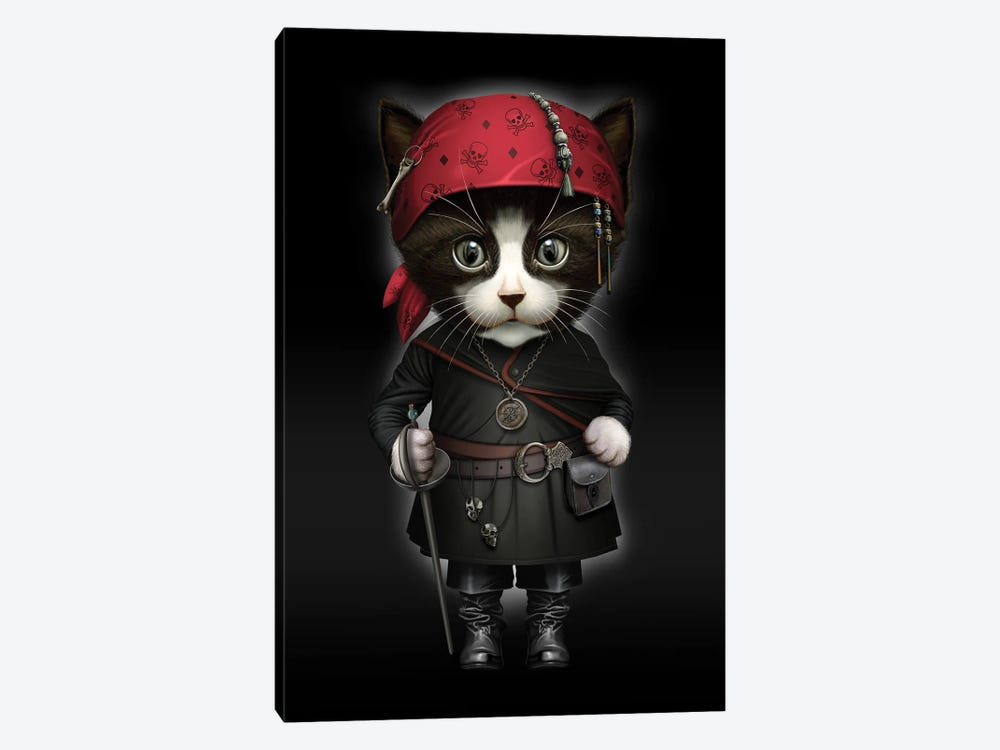 Pirate Cat by Adam Lawless 1-piece Canvas Wall Art