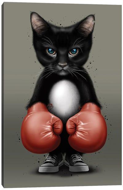 Cat Boxer 2017 Canvas Art Print