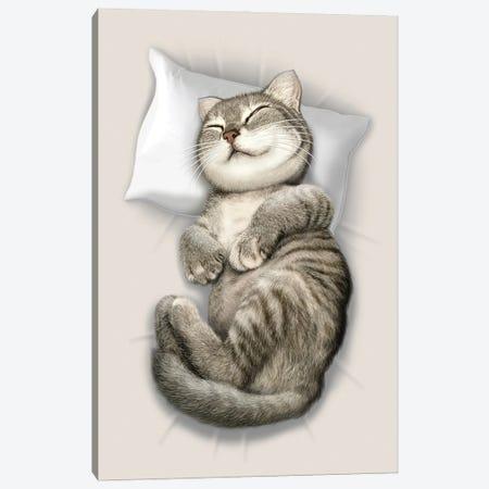 Cat Sleeping Canvas Print #ADL17} by Adam Lawless Canvas Art