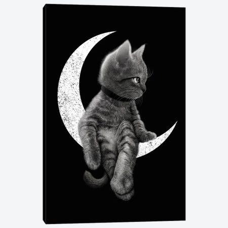 Dreamcat Canvas Print #ADL24} by Adam Lawless Canvas Print
