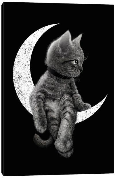 Dreamcat Canvas Art Print