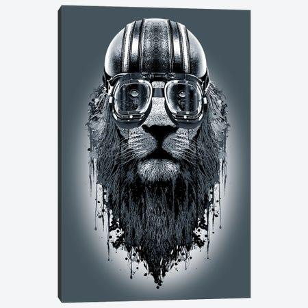 Lionrider Canvas Print #ADL48} by Adam Lawless Canvas Art