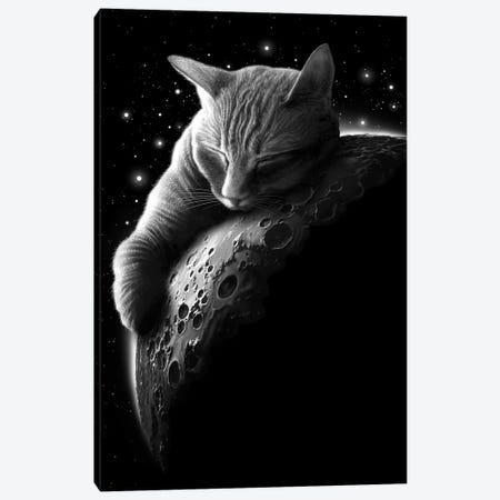 Mooncat Canvas Print #ADL57} by Adam Lawless Canvas Artwork