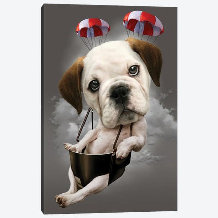 Parachute Dog Canvas Print #ADL74} by Adam Lawless Canvas Art