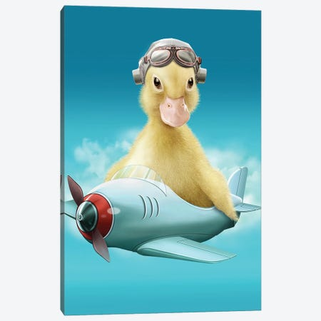 Pilot Duck Canvas Print #ADL77} by Adam Lawless Canvas Artwork