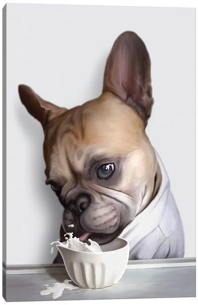 Pug Drinking Canvas Art Print