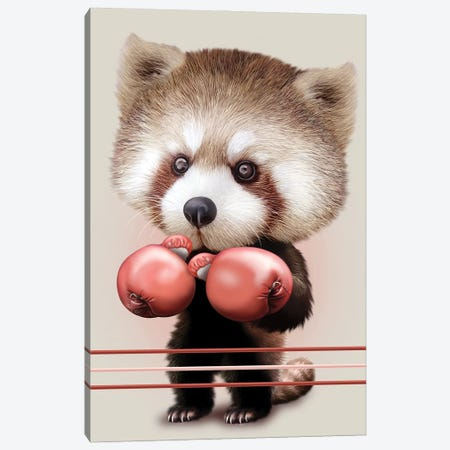 Red Panda Boxer Canvas Print #ADL81} by Adam Lawless Canvas Art