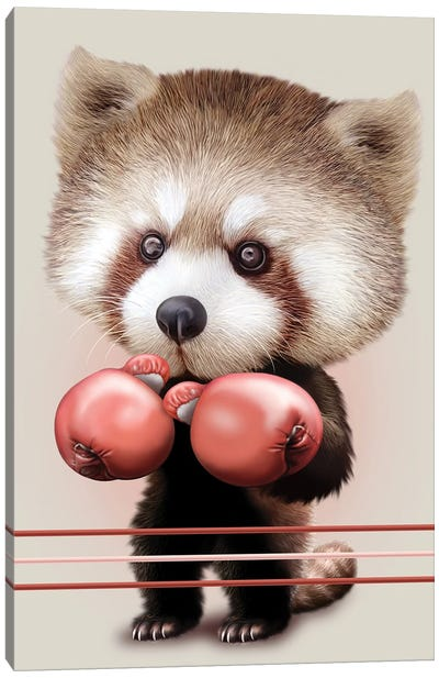 Red Panda Boxer Canvas Art Print