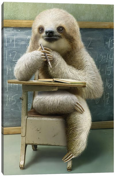 Sloth In Class Canvas Art Print