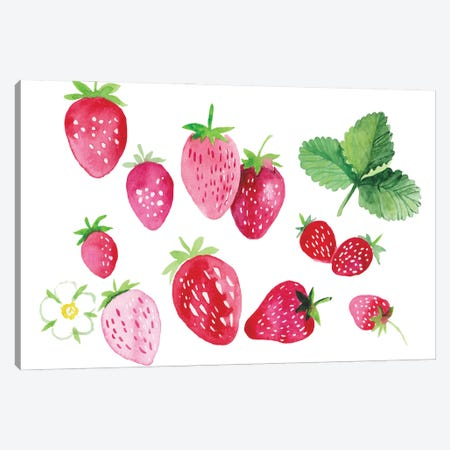 Strawberries Canvas Print #ADN83} by Alexandra Dobreikin Canvas Wall Art