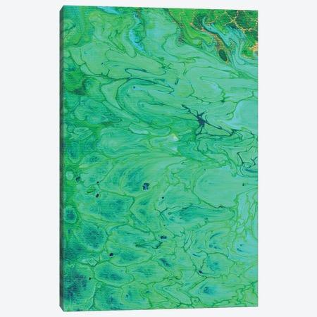 Malachite Canvas Print #ADN98} by Alexandra Dobreikin Canvas Art Print