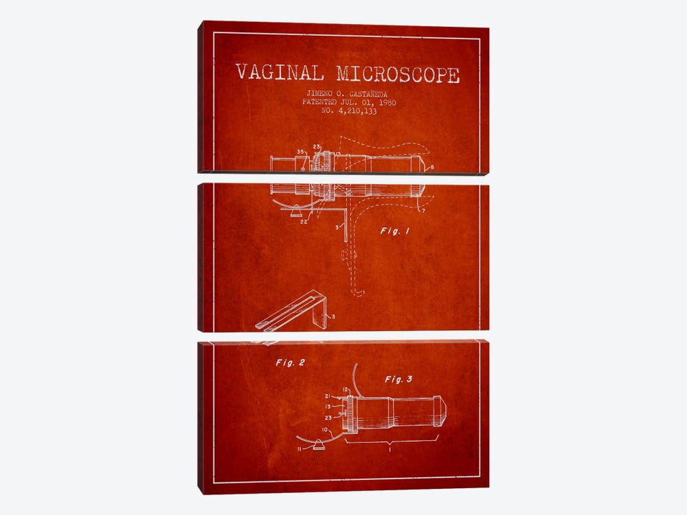 Vaginal Microscope Red Patent Blueprint by Aged Pixel 3-piece Canvas Artwork