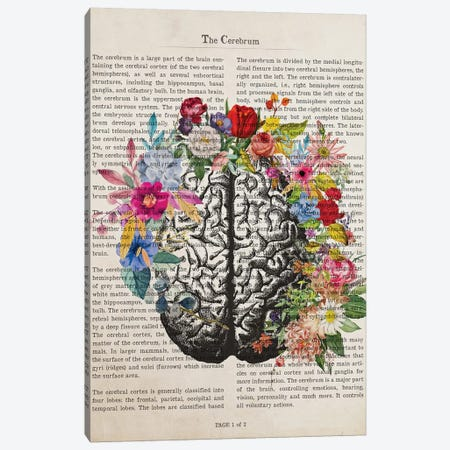 The Cerebrum Canvas Print #ADP3216} by Aged Pixel Canvas Art Print